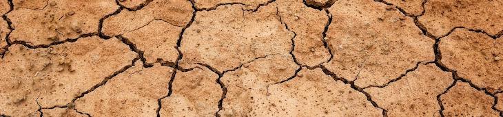 オールインワンゲル 乾燥肌 おすすめ 選び方