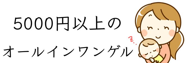 5000円台 オールインワンゲル